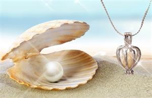 Výsledok vyhľadávania obrázkov pre dopyt perla priani